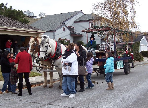 photo 6 of Buzzard's Roost Carriage Rides