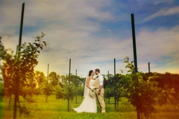 1394054941560  Rockton wedding venue
