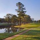 130x130_sq_1295892964927-golf2ts