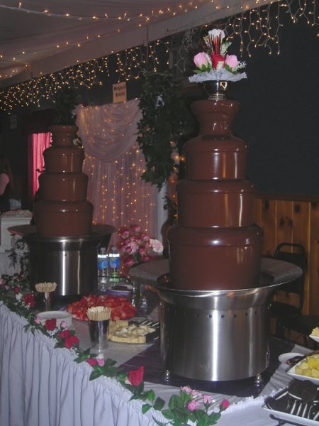 photo 3 of Leroy's Chocolate Fountains