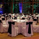 130x130 sq 1357761854575 weddinglightingoakbrookil800x533