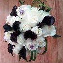 130x130_sq_1362431687901-bride1