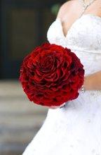 220x220_1287066031387-wedding49