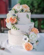 220x220 1464292323 a66d44b433f69917 backtoeden wedding tieredcake