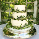 130x130 sq 1473348501388 textured buttercream wedding cake with olive branc