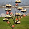 Enticing Tables