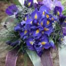130x130 sq 1421088757709 blue iris and scabiosa