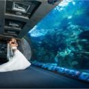 130x130 sq 1443210364080 wedding pic 1