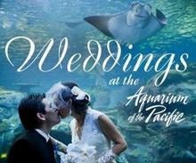 220x220 1426289588076 300x250 ca wedding day 0215 flat