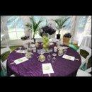 130x130 sq 1361896389141 purplecrush