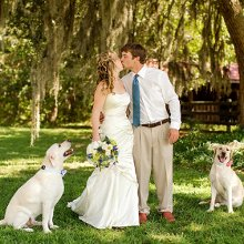 220x220 sq 1361133826726 charlestonweddingphotographer399