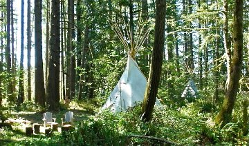 photo 10 of Tipi Village Retreat