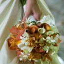 130x130_sq_1351527853855-bridal