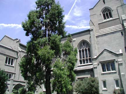 photo 6 of First Presbyterian Church of Oakland