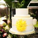 130x130 sq 1290016904496 cake1sm