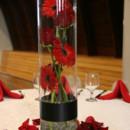 130x130 sq 1376412491059 gerber daisy centerpiece