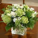 130x130 sq 1376412808354 green white flowers