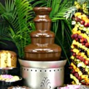130x130 sq 1453697967954 chocolate fountain display