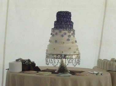 1421586776991 12383486032061230735841970025460n Oneida wedding cake