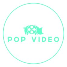 POP Video Houston photo