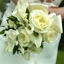 130x130_sq_1291333124925-bridalweddingbouquet1