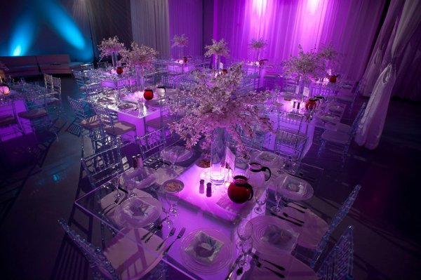 photo 18 of Fenice Events Chair Rentals