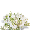 130x130 sq 1457361187008 bright whites miami gardens flower delivery aventu