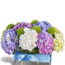 130x130 sq 1457361225612 happy hydrangeas miami gardens flower delivery ave