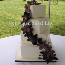 Sugar Buzz Wedding Cake Richmond Va Weddingwire