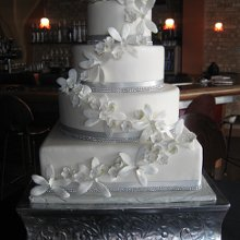 220x220 sq 1342299653062 southbendweddingcakesdisplay