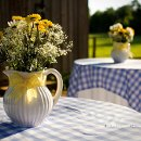130x130_sq_1342623504717-farmwedding0051
