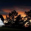 130x130 sq 1296617771953 wedding74