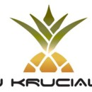 130x130 sq 1454150162347 dj krucial k logo photo