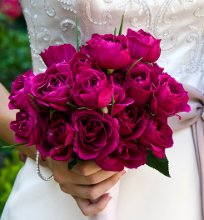 220x220_1294958458791-allaboutflowers1