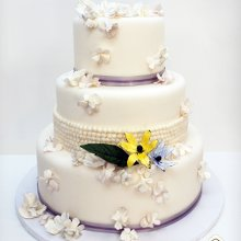 220x220 sq 1361575578640 petalsandpearlsfashionistaweddingcake1200