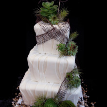 220x220 sq 1381155915901 rustic tapered square wedding cake with grapevine wrap and succulents angle 1200