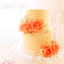 220x220 sq 1443109074353 buttercream 2 tier with peach roses 1200