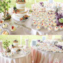 220x220 sq 1444915943421 blennerhassett island wedding cake and cupcakes 12