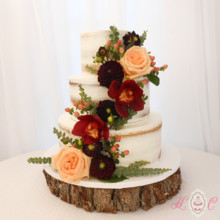 220x220 sq 1475073751033 partially naked cake with deep reds and peach rose