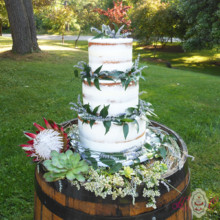 220x220 sq 1475074933189 partially naked cake with fresh lavender on site 1