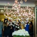 130x130 sq 1426710181697 cherry blossom tree 2