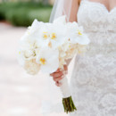 130x130 sq 1473348564582 marco island marriot wedding photographer set free