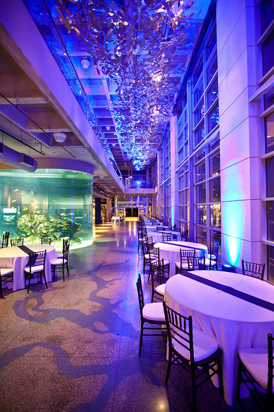 South Carolina Aquarium Charleston Sc Wedding Venue