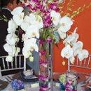 130x130 sq 1202226660788 orchidsbluecp