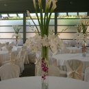 130x130 sq 1204393522976 flowers044