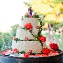 130x130 sq 1451510092110 wedding cake 354