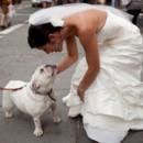 130x130_sq_1397491654563-wedding-photographer-caseyfatchettphotography-06