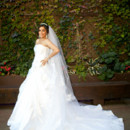 130x130_sq_1397492898225-wedding-dresses-