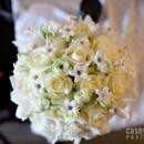 130x130_sq_1397494555234-bouquets-wedding-flowers-1