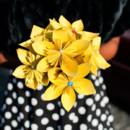 130x130 sq 1397494618291 bouquets wedding flowers 4